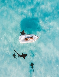 Ocean from above